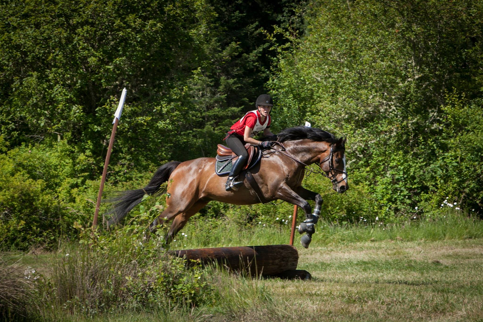 eventing-photo-63