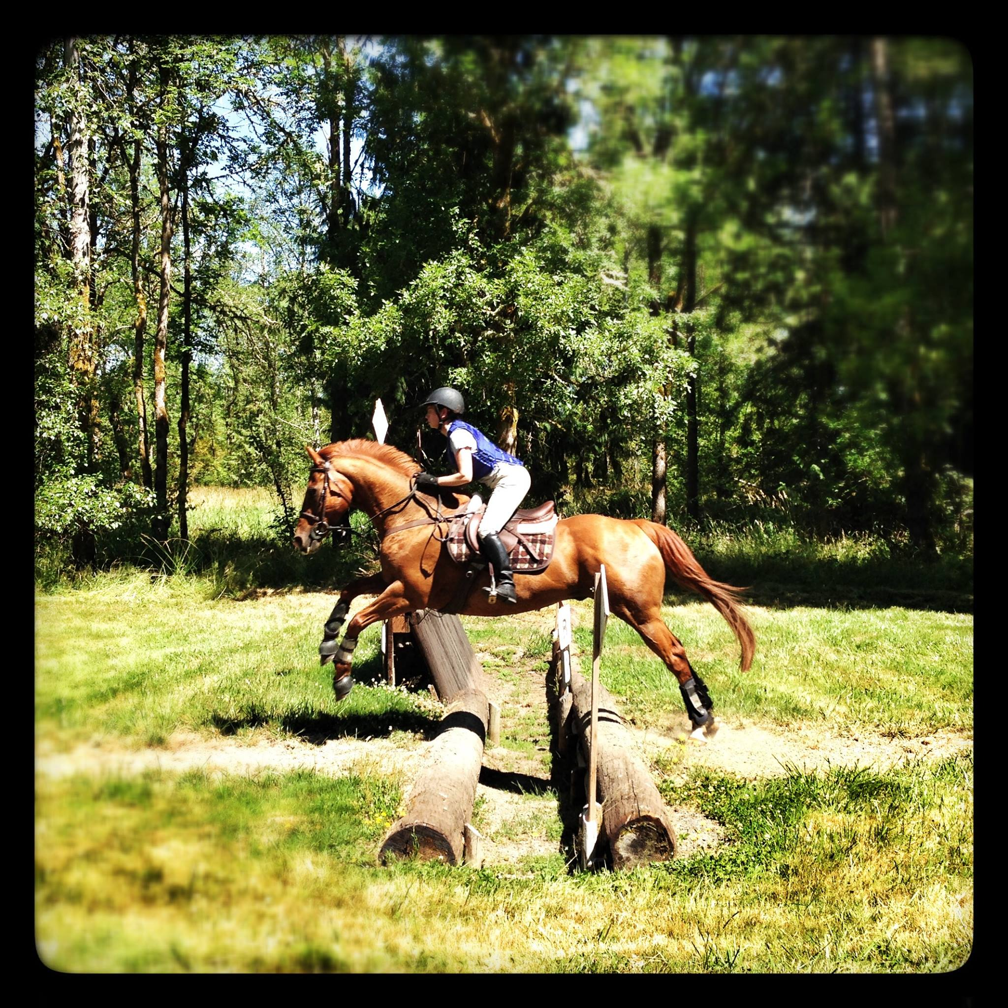 eventing-photo-58