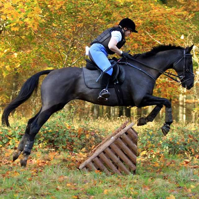 eventing-photo-74