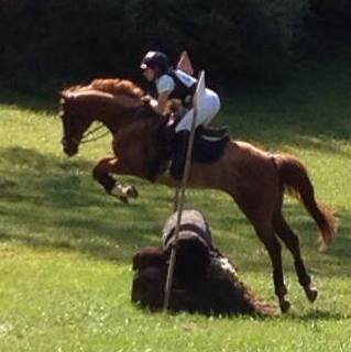 eventing-photo-59