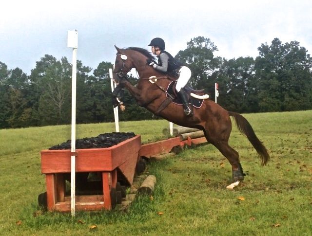 eventing-photo-69