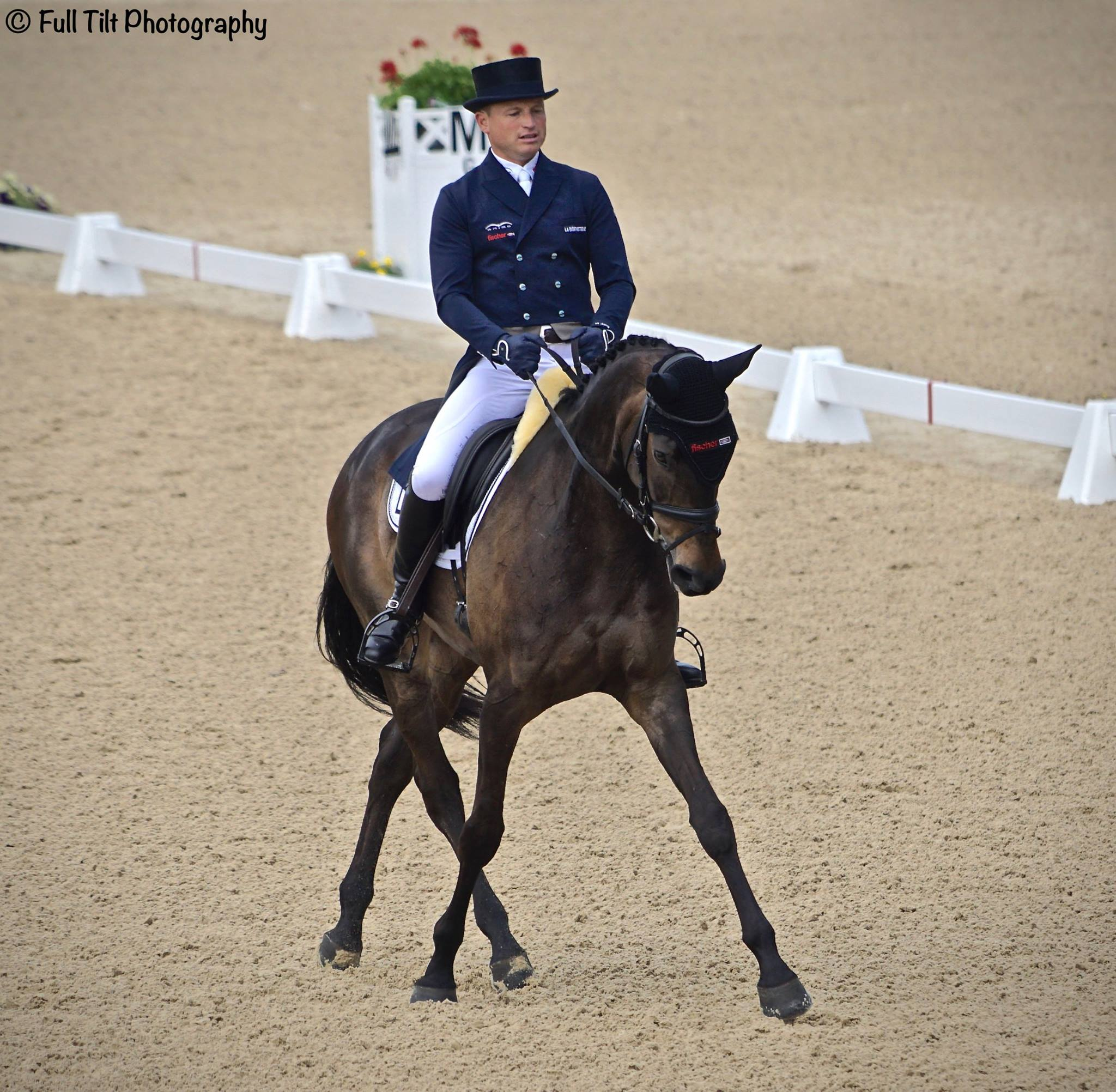 Half pass in Dressage | Eventing
