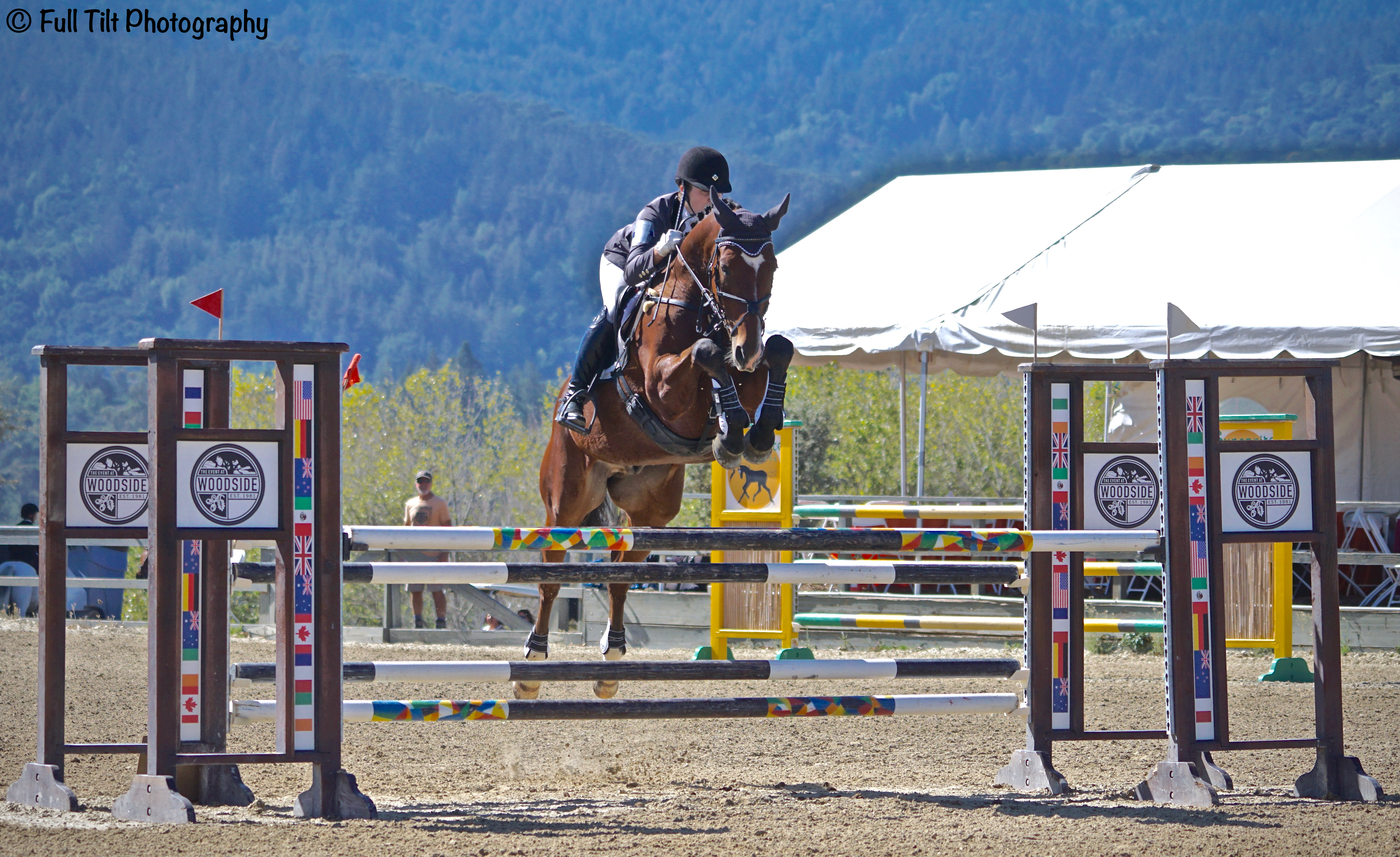 Show Jumping | Eventing